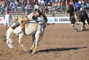 Buckeye Rodeo