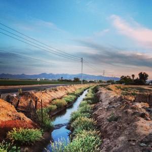 Buckeye canal
